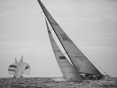 Intrepid sails in 2009 12 metre worlds in newport