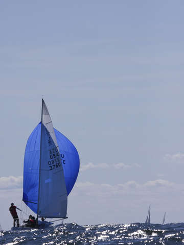 J24 sails downwind