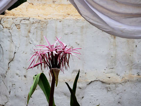 Cool colors 2